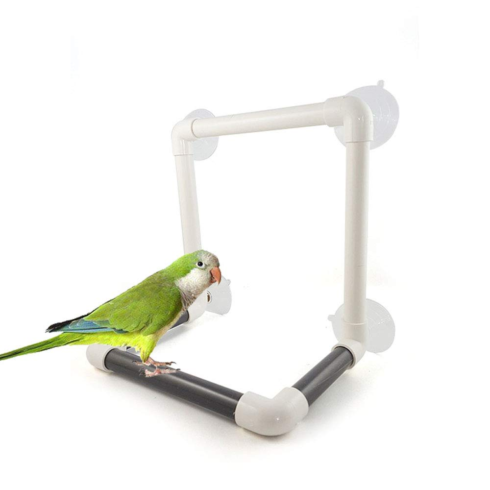 UTOPIAY Bath Perches for Bird Parrot Standing Platform Rack Suction Cup Window Shower Bird Bath Toys Frame by UTOPIAY