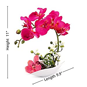 Louis Garden Artificial Silk Flowers 7 Head Simulation Phalaenopsis Arrangements Bonsai (Simulation of Water) (Red) 3