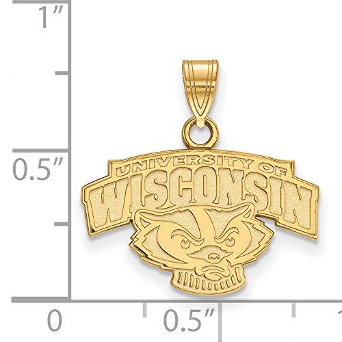 10k Yellow Gold University of Wisconsin Badgers Bucky Mascot Head Name Pendant 14x20mm