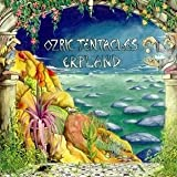 Erpland by Ozric Tentacles (2010-06-15)