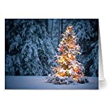 24 Holiday Note Cards - Christmas Glow - Blank Cards - White Envelopes Included