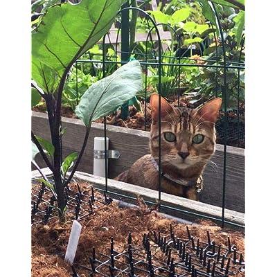 Cat Box Repellent Cat Scat Outdoor Garden Mat