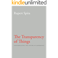 The Transparency of Things: Contemplating the Nature of Experience