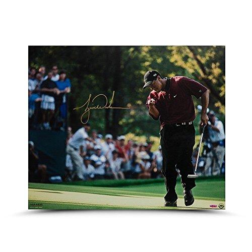 "TIGER WOODS Autographed""2000 PGA Championship"" 20 x 24 Photo UDA"