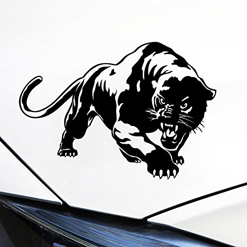 panthers window decal - 6