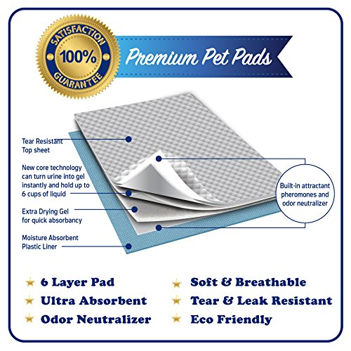 The 8 best puppy pads with pheromones
