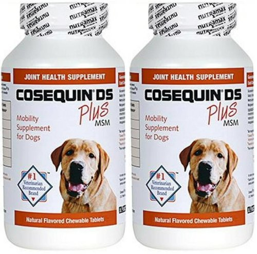 Cosequin DS Plus MSM 250 count x 2 PK