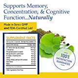Nootropic Brain Function Booster Supplement