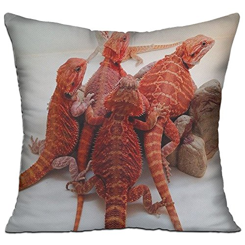 Noi Viviamo Throw Pillow Case Decorative Red Bearded Dragon Lizards Pillow Decorative For Sofa, Lap Desk, Home Pillow Cotton Linen Cushion Covers Filled Pillow Form Insert 18 X 18 Inch (Deck Lizard Light)