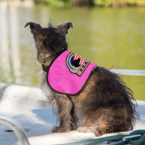 Working Service Dog Brand - Premium ESA Dog Vest - For Smaller Emotional Support Animals (4-7 Pounds, Raspberry) by Working Service Dog (Image #1)