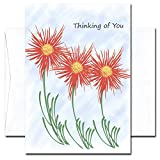 Brighter Days: Thinking of You Cards - box of 10 cards & envelopes