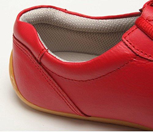 Jinji Zapatillas Unisex de adultos para Tai-Chi, Wu Shu, Kung Fu, Estilo Básico para entrenamiento diario Rojo - rojo