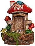SINTECHNO SNF91149-2 Cute Gnome and Frog Water Fountain