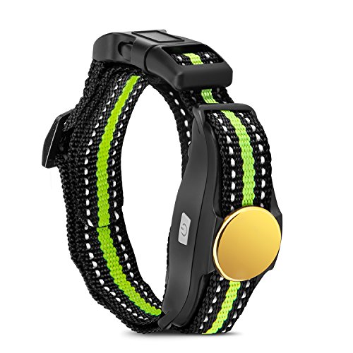 Bousnic Replaced Collar Receiver for Dog Training Collar (Green)