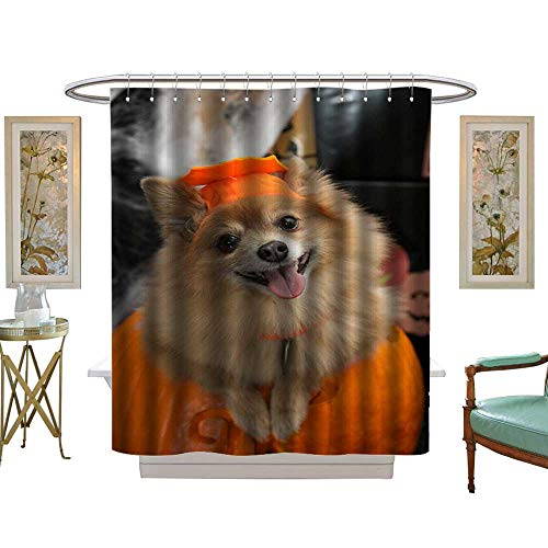 luvoluxhome Shower Curtains Sets Bathroom Halloween Costume Puppy Satin Fabric Sets Bathroom W36 x L72 -