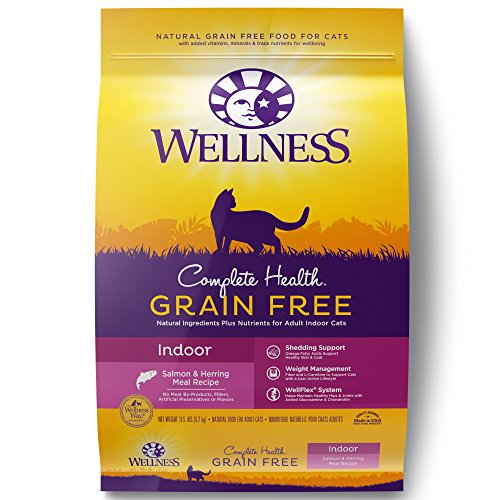 Top 9 Wellness Cat Dry Salmon Food