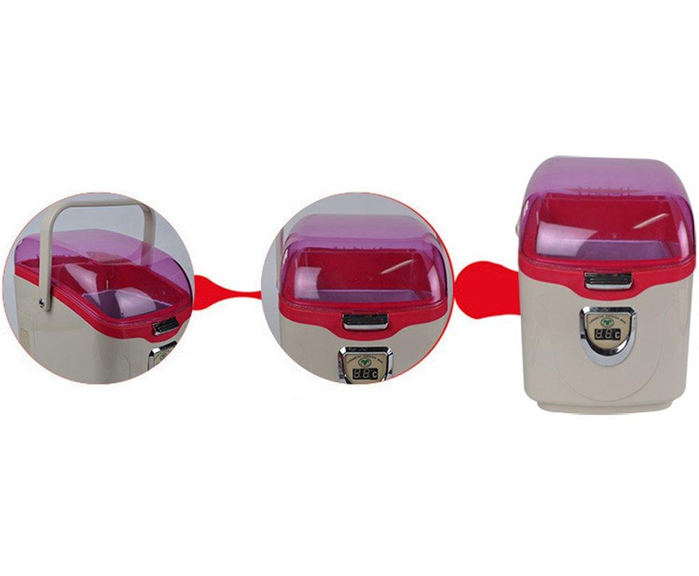 Mini Kühlschrank Kosmetik : L auto kühlschrank portable kühlschrank kleines büro