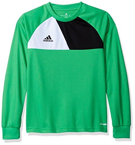 Kids Soccer Jersey Adidas - adidas Youth Soccer Assita 17 Goalkeeper Jersey, Energy Green/Vista Grey, Small