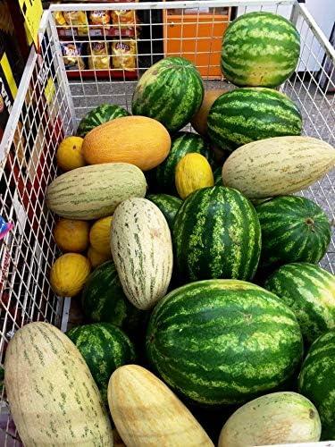 Heirloom Organic Seeds Watermelon Garden Collection 4 Top Varieties