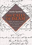 The Calls of Islam: Sufis, Islamists, and Mass Mediation in Urban Morocco (Public Cultures of the Middle East and North Africa)