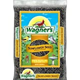Wagner's 52021 Oil Sunflower Seed, 2-Pound Bag