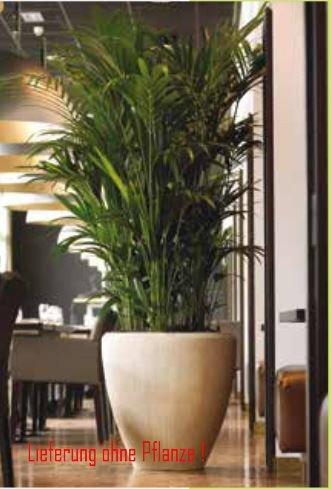 Blumenübertopf Polystone Couple aus gemahlenen Stein und Kunststoff, nur für den Innenbereich geeignet. Farbe Natur, Ø 40cm Höhe 40cm