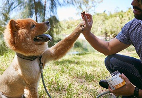 PetMio Bites - Human Grade Dog Treats, Banana Almond Butter Pumpkin Recipe, Certified Gluten Free, Certified Non-GMO, Grain Free, Healthy, All Natural, & Made In the USA (Single)