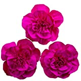 Giant Paper Flower Decorations for Wall Rose Paper Flower for Wall Rose Crepe Paper Flower for Wedding Bouquets Centerpieces Arrangements Party Baby Shower Decorations Nursery Wall Decor(Set 3)