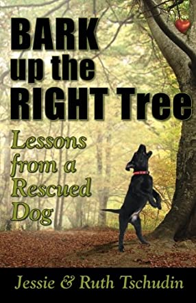 Bark Up The Right Tree