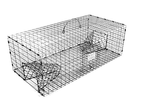 Tomahawk Double Door Rigid Live Sparrow Trap by Tomahawk Live Trap
