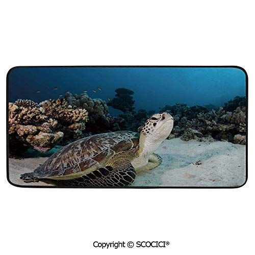 Print Door Mat, Indoor Floor Area Carpet Compatible Bedroom,Living Room,Children, Playroom, Bathroom,Turtle,Underwater Sea Animal on Coral Reef in Red Sea Egypt Amphibian,39