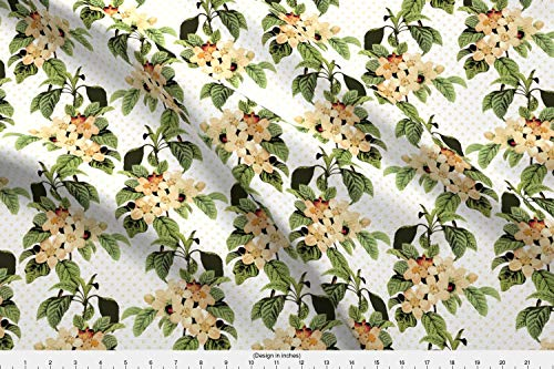 - Spoonflower Victorian Fabric - Victorian Apple Blossoms Floral Botanical Redoute French France - by Chantal Pare Printed on Modern Jersey Fabric by The Yard