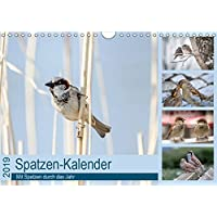Spatzen-Kalender (Wandkalender 2019 DIN A4 quer): Mit Spatzen durch das Jahr (Monatskalender, 14 Seiten ) (CALVENDO Tiere)