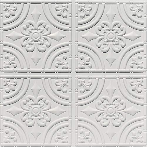 Beautiful Iron - From Plain To Beautiful In Hours 205wm-24x24 Ceiling Tile, White Matte