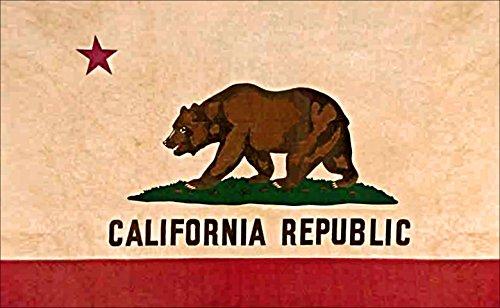 American Vinyl VINTAGE California Bear Flag Sticker (ca bear old native love)