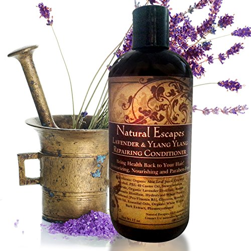 (Organic Lavender & Ylang Ylang Conditioner | Moisturizing Conditioner for Dry Hair, Color Treated Hair, Hair Growth & More | Paraben & Sulfate Free Conditioner | 16 oz)