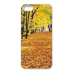 Personalized Cell Phone Case For iPhone ipod touch4,charming yellow forest and fallen leaves ground beauty autumn scene