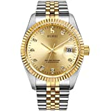 BUREI Mens Luxury Automatic Watch Two Tones Stainless Steel Dress Wrist Watches Self-Winding (Gold)