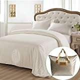 Taihu Snow Silk Comforter 100% All Natural Grade AA Mulberry Silk Quilt with Jacquard Duvet Cover for All Seasons (King, Superior Series)