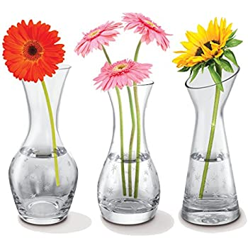 Amazon Art Artifact Set Of 5 Petite Glass Bud Vases In Clear