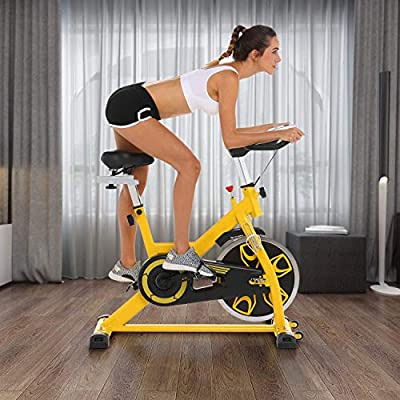 Aceshin Indoor Cycling Bike, Adjustable Resistance, Exercise Bike Stationary Quiet, Fitness Spinning Bike Workout Training Equipment