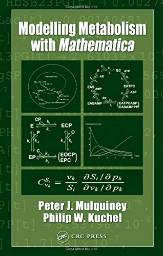 Modelling Metabolism with Mathematica by Peter Mulquiney (2003-05-14)