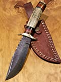 Handmade Deer Antler Handle Hunting Knife Damascus Blade Stag Collection With Leather Sheath Premium (A210)