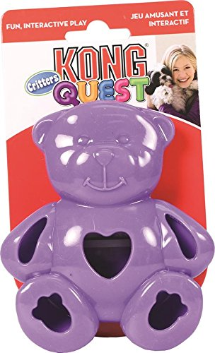 KONG Quest Critter Bear Toy, Small (Quest Kong compare prices)