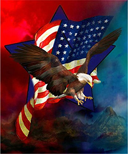 Kuwoolf 5D DIY Diamond Painting Crystal Eagle American Flag Cross Stitch Embroidery Animals Full Square Drill Diamond Pattern Home Decoration -E (Eagle Flag Embroidery)