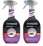 Stainmaster Carpet Care, Carpet Stain Remover, 22oz (2)