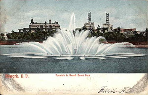 Fountain in Branch Brook Park Newark, New Jersey Original Vintage Postcard