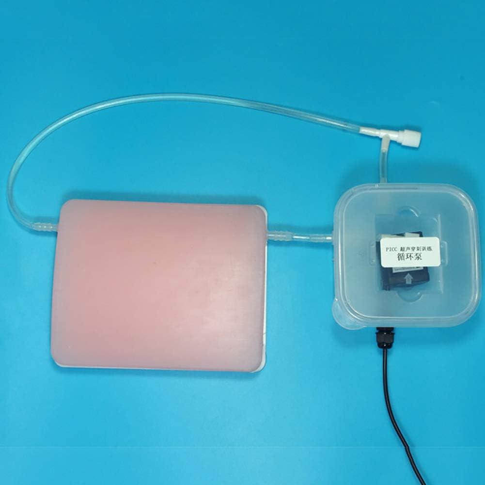 ZXQ Guiada por Ultrasonido Modelo De Punción Vascular PICC B-Intervencionista Módulo De Punción De Entrenamiento