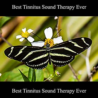 Best Tinnitus Sound Therapy Ever by Paul Harrison on Amazon Music