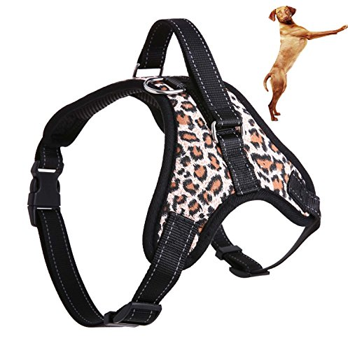 Banana Costumes Peeled Toddler (QBLEEV Pet Front Range All-Day Adventure Harness for Dog all Breeds Adjustable With Handle No Choke Non-Slip Excellent Training Walking Hiking No-Pull Outdoor (L(CHEST 24.8